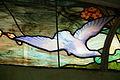 Dove Aquarium école Nancy.jpg