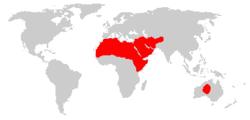 Distribuição de Dromedários domesticados no mundo.