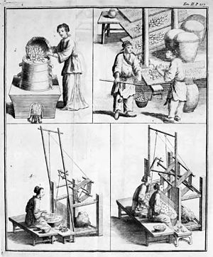 Sprouts of capitalism - Workers in the porcelain and silk industries (early 18th century)