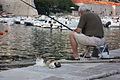 Dubrovnik - Flickr - jns001 (79).jpg