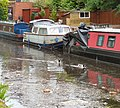 Ducks and Debris - geograph.org.uk - 1312598.jpg