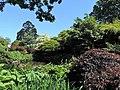 Dunedin Botanic Garden kz06.jpg