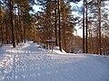 EU-EE-Tallinn-Pirita-Kloostrimetsa 022.JPG