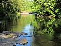 East Fork Lewis River at Moulton Falls Park in Washington 1.jpg