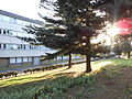 Ecole Centrale Lille - Cité scientifique Villeneuve d'Ascq.jpg