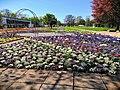 Egarpark Zentrales Blumenbeet 1.jpg