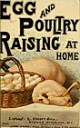 Egg and poultry raising at home (1902) (21181853352).jpg