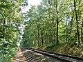 Eisenbahnstrecke in der Nähe der ehemalingen innerdeutschen Grenze - panoramio (1).jpg