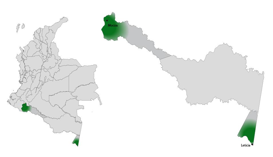 Eje musical de Frontera - Amazónico