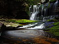 Elakala Waterfalls pub11 - West Virginia - ForestWander.jpg