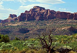 Elephant Butte in Arches National Park.jpg