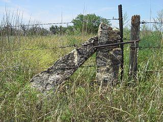 Fencepost limestone