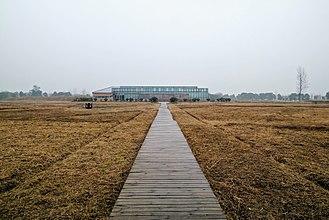 Chengtoushan - Entrance of the Chengtoushan ruins
