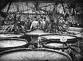 Füvészkert, Viktória-ház, virágzó amazóniai tündérrózsák. Fortepan 17536.jpg