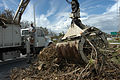 FEMA - 10685 - Photograph by Mark Wolfe taken on 09-11-2004 in Florida.jpg