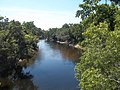 FL near CR 141 Withlacoochee River north01.jpg