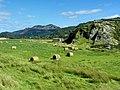 Fairbourne - panoramio (5).jpg