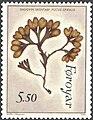 Faroe stamp 284 seaweed - spiral- or flat wrack (Fucus spiralis).jpg