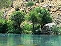 Fars - Sedeh - Tange Boragh - panoramio.jpg