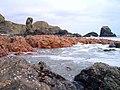 Felsite rocks Muchalls - geograph.org.uk - 375747.jpg