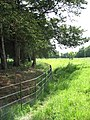Fence surrounding St Andrew's churchyard - geograph.org.uk - 1338066.jpg