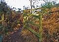 Fenced Off - geograph.org.uk - 669320.jpg