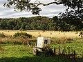 Fields by Knockiemill, Turriff - geograph.org.uk - 555821.jpg