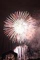 Fireworks - July 4, 2010 (4773111333).jpg