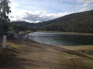 Flagstaff Gully, Tasmania - Image: Flagstaff Gully Reserve