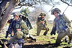 Flickr - Israel Defense Forces - The Strongest Trees in the Golan Heights (7).jpg