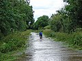 Flooded lane to Elvaston - geograph.org.uk - 1200039.jpg