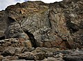Fold in Cliffs at Porthtowan.jpg