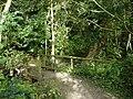 Footbridge, Harrison's Plantation - geograph.org.uk - 1001385.jpg