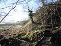 Footbridge on Mersey Way near Dungeon Cliffs - geograph.org.uk - 683742.jpg