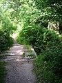 Footbridge over the River Ouse - geograph.org.uk - 895702.jpg