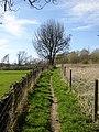 Footpath 46, off Brier Lane, Southowram - geograph.org.uk - 399062.jpg