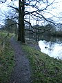 Footpath along side the River Kent - geograph.org.uk - 1616491.jpg