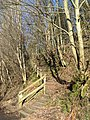 Footpath from Black Pool Bridge to St. Mark's Church - geograph.org.uk - 704636.jpg