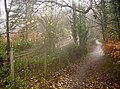 Footpath to Chatham - geograph.org.uk - 625756.jpg
