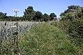 Footpath to Little Whelnetham - geograph.org.uk - 1379733.jpg