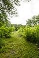 Forest Park, Springfield, MA 01108, USA - panoramio (45).jpg