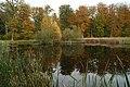 Forest lake - panoramio (1).jpg