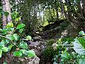 Foresta a galleria di Ontani.JPG