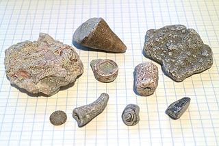 Geology of Gotland