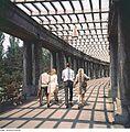 Fotothek df ps 0006304 Gärten - Parks ^ Stadtparks.jpg