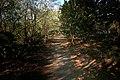 Freedom Trail Las Piñas-Parañaque Critical Habitat and Ecotourism Area (LPPCHEA).jpg