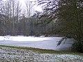 Frozen Fishing Lake - geograph.org.uk - 1110699.jpg