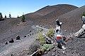 GR-131 Ruta de los Volcanes La Palma 20080606.jpg