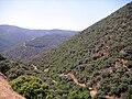 Garganta Barquizuelas 21June2009 SierraMadrona.jpg