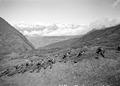 Gefechtsausbildung im Gebirge - CH-BAR - 3238897.tif